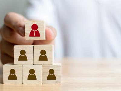 HR Processes, Culture & Change Management